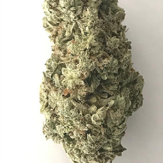 SUPER GLUE 27%THC